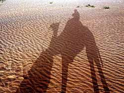 camel-shadow